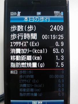 image_338.jpg